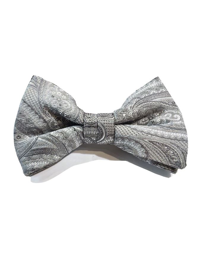 Picture of Ted Baker Paisley Silk Bow Tie