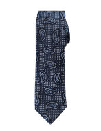 Picture of Hemley German Made Textured Paisley Skinny Silk Tie